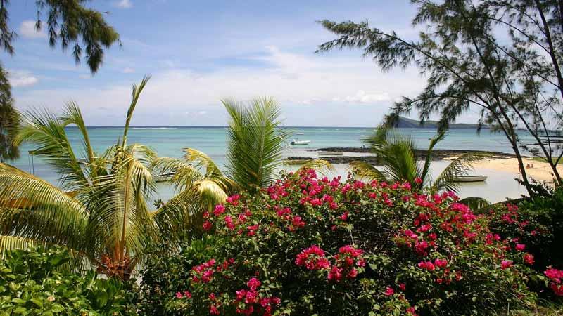 Destination l'île Maurice