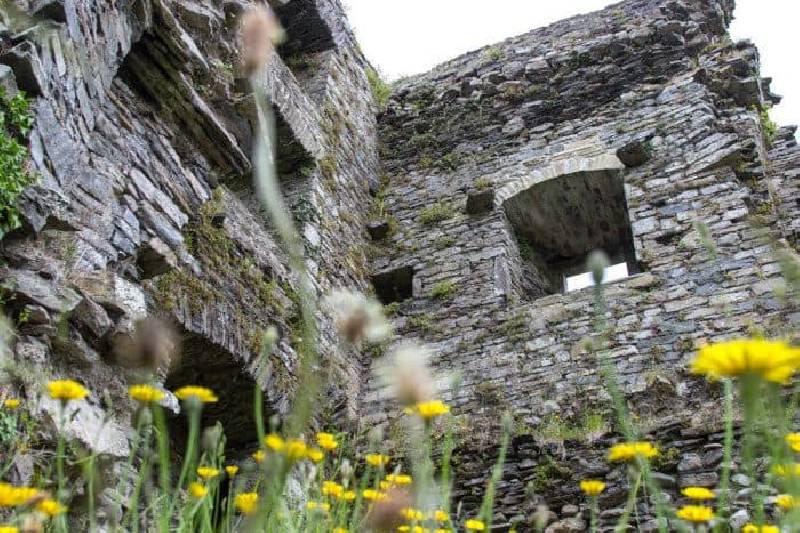 Le château de Carriganass est l'un des meilleurs châteaux d'Irlande
